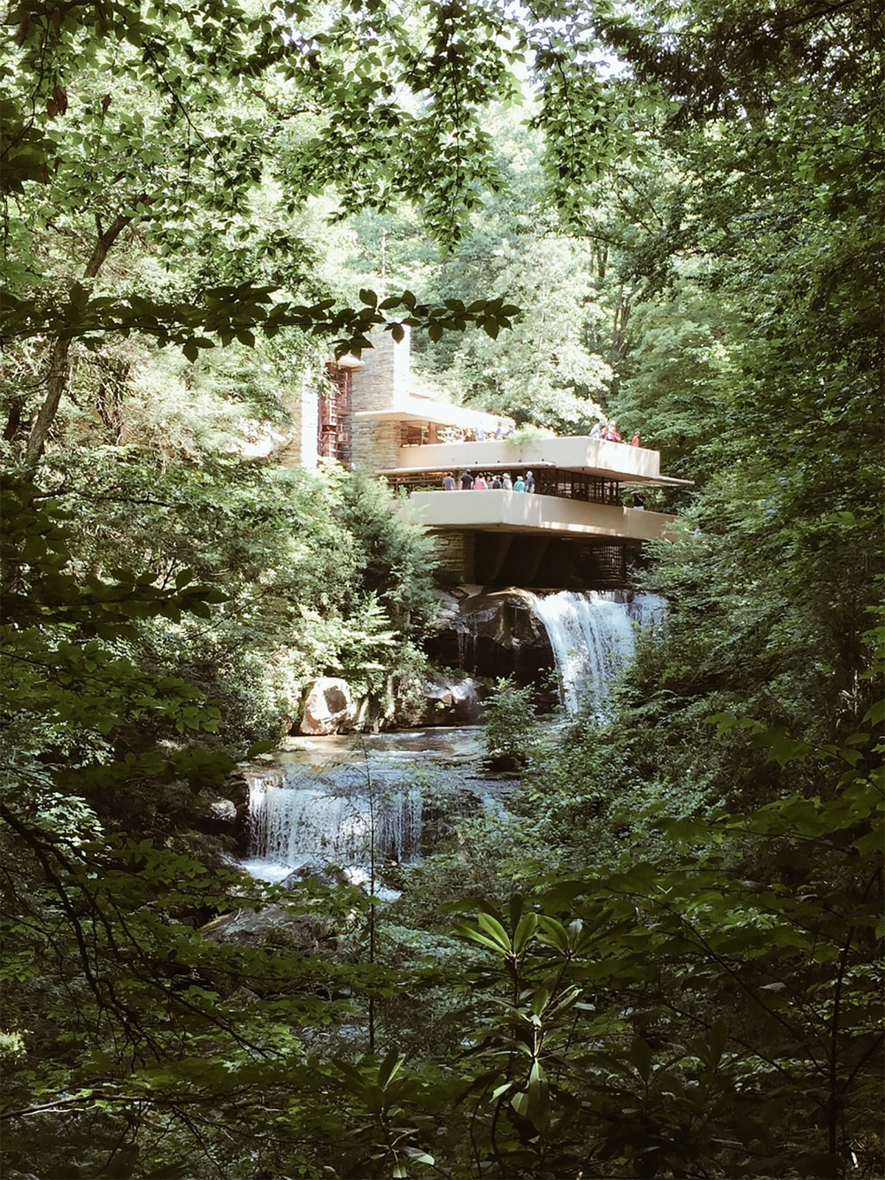 modern house near river