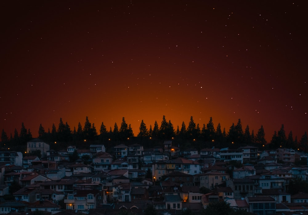 houses and trees during nighttime