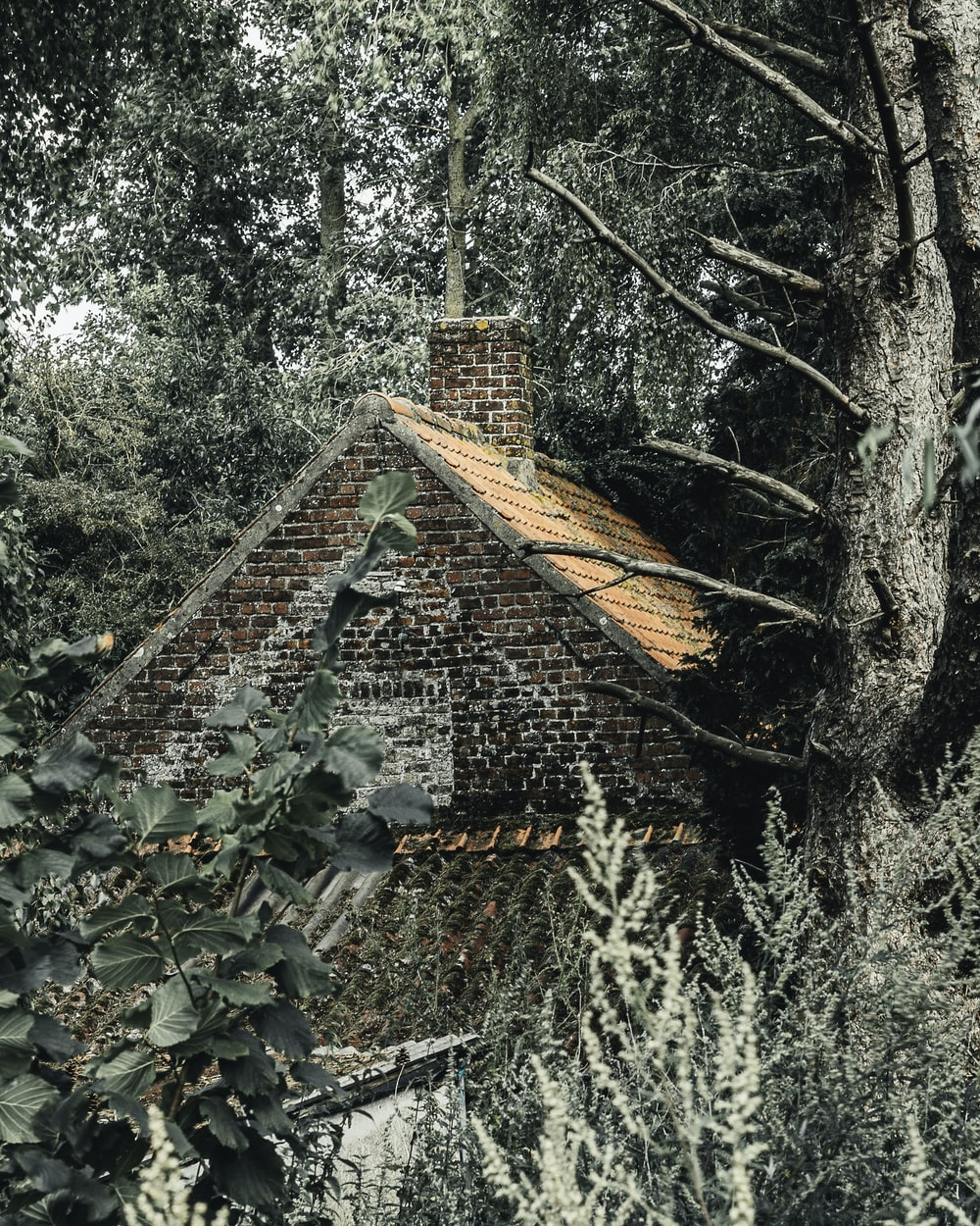 brown bricked house with chimney surrounded by trees