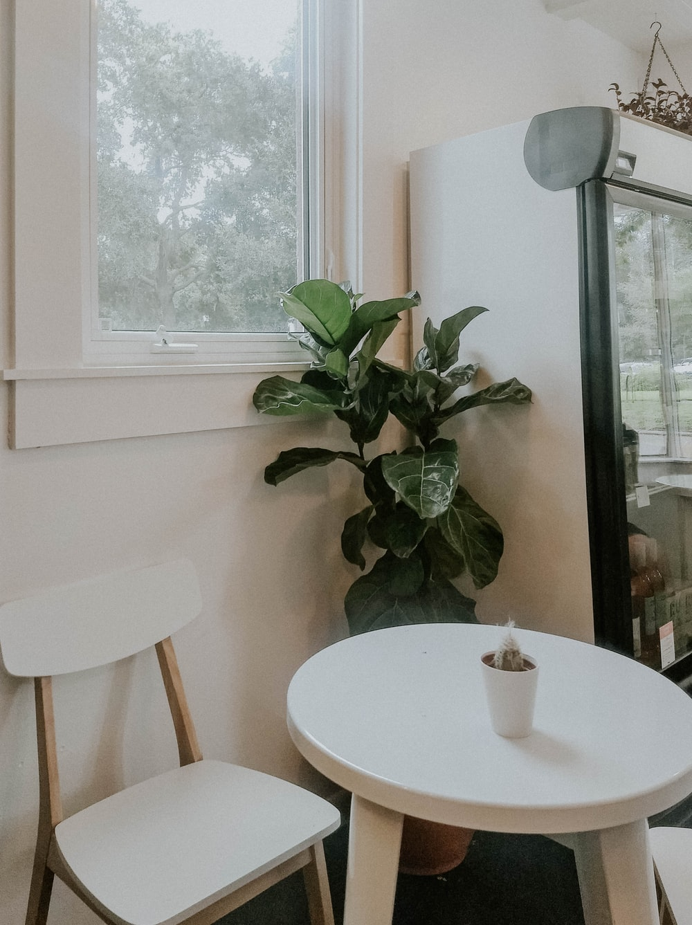 white cup on white wooden table beside window