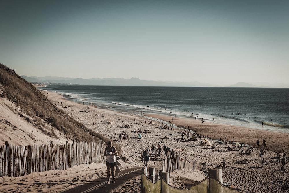 people walking and sitting on seashore during daytime