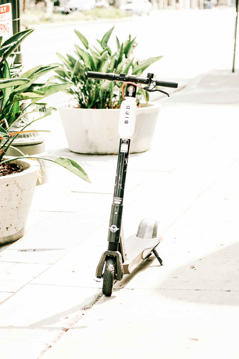 white and black kick scooter parked besides white plant pot