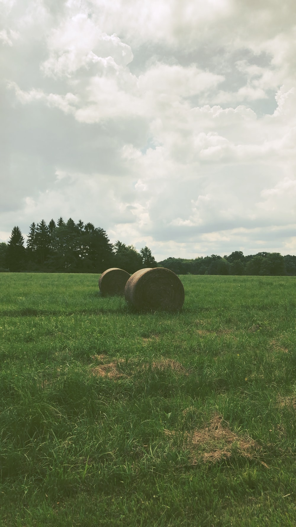 hay rolls on grass during day