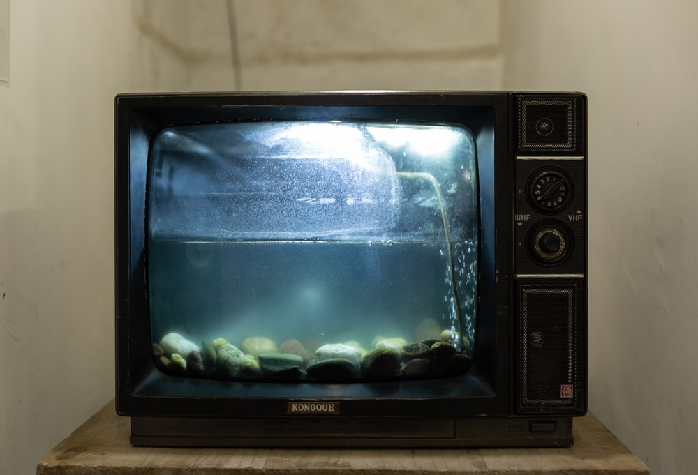 black aquarium