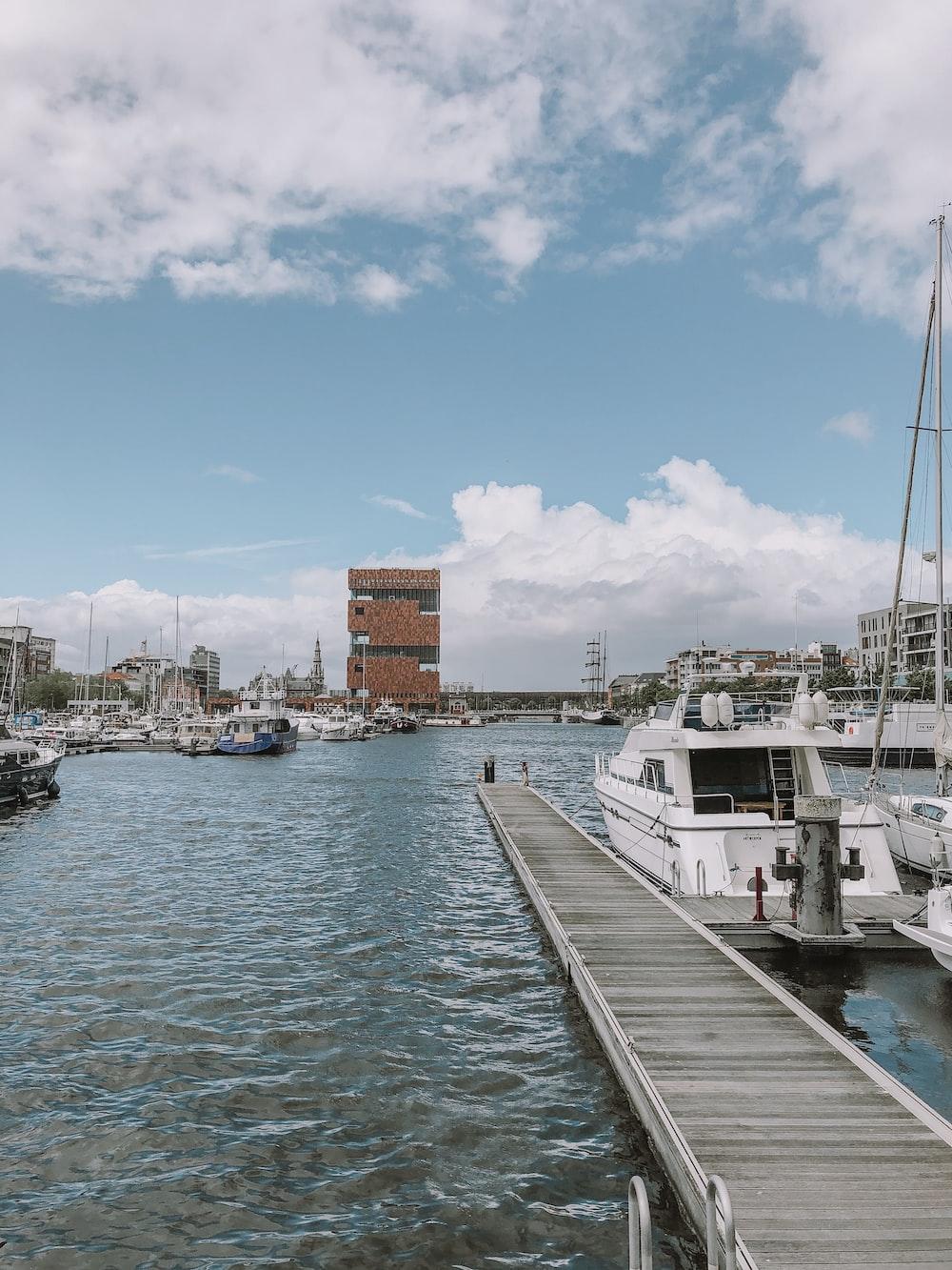 brown wooden water dock