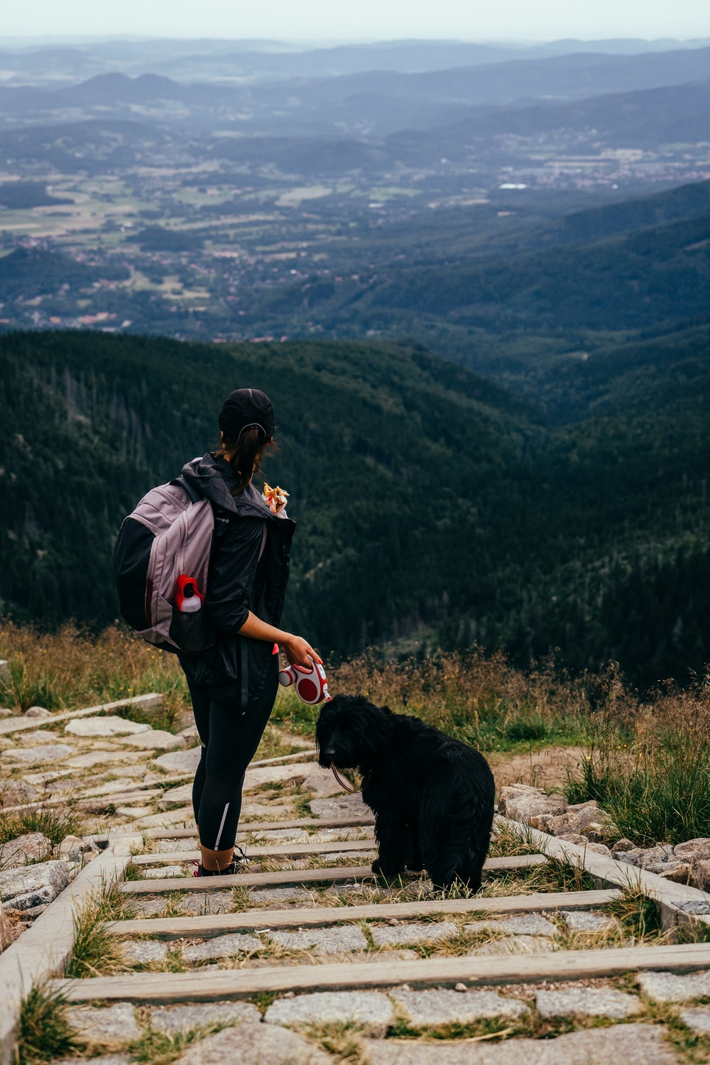 woman standing near dog during daytime