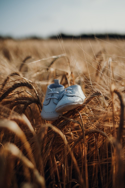 closeup photo of white shoes
