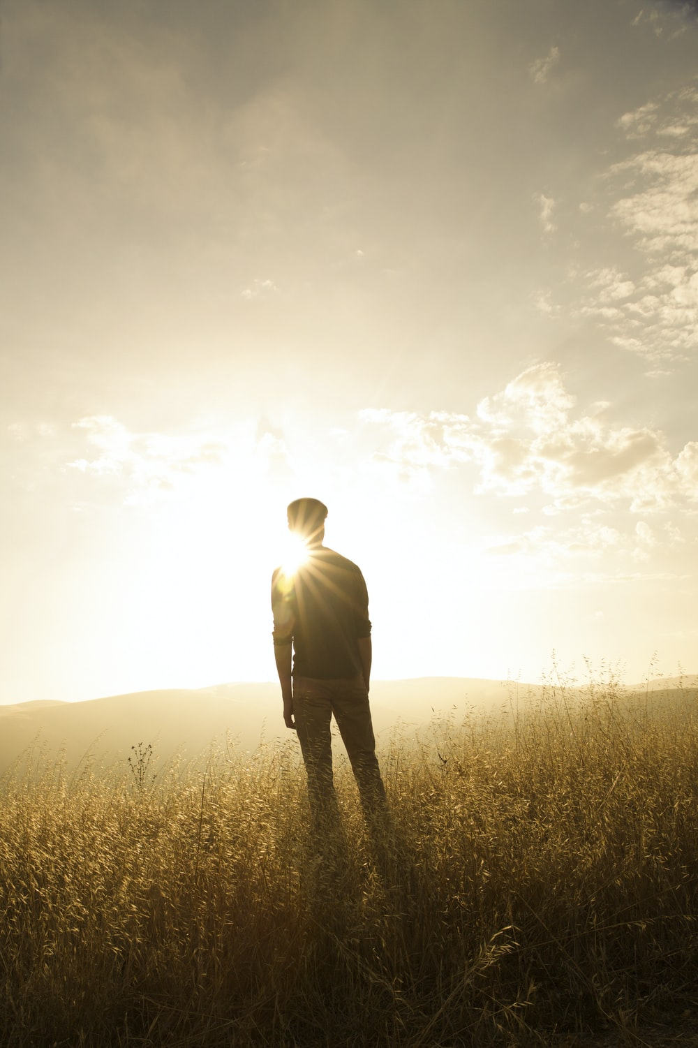 silhouette photography of man standing on grass field during golden hour