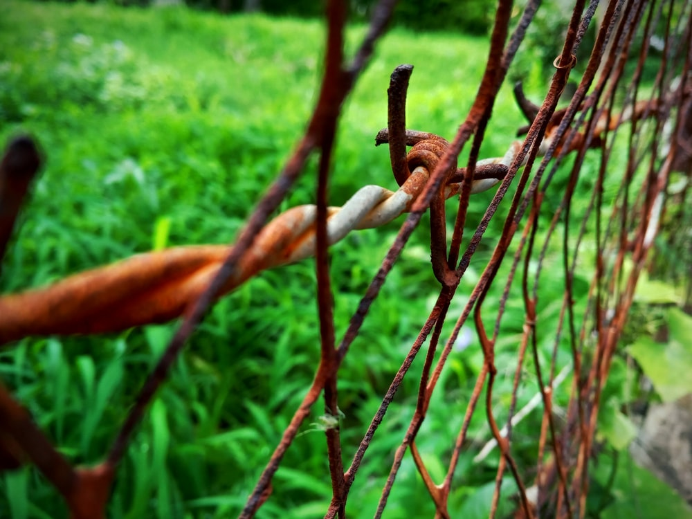 rusted chain-linked fence