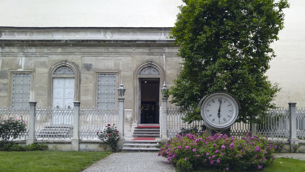 clock near tree and building during daytime