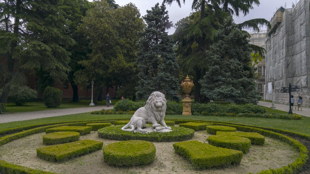 gray lion statue