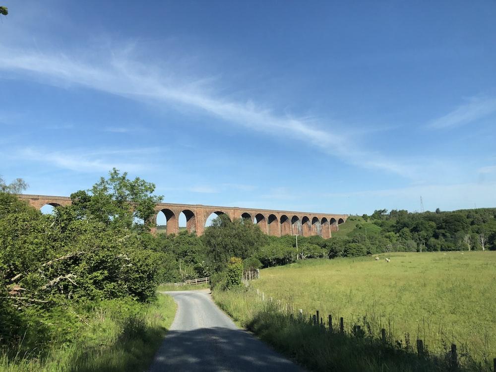 brown bridge near trees and road
