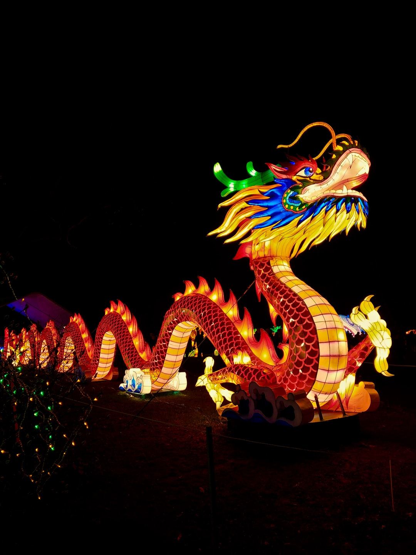 Chinese New Year Lights Festival, Staten Island, New York