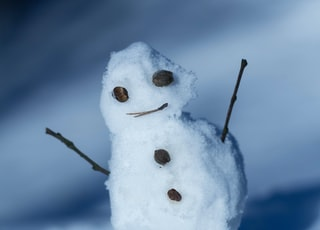 closeup photo of snowman