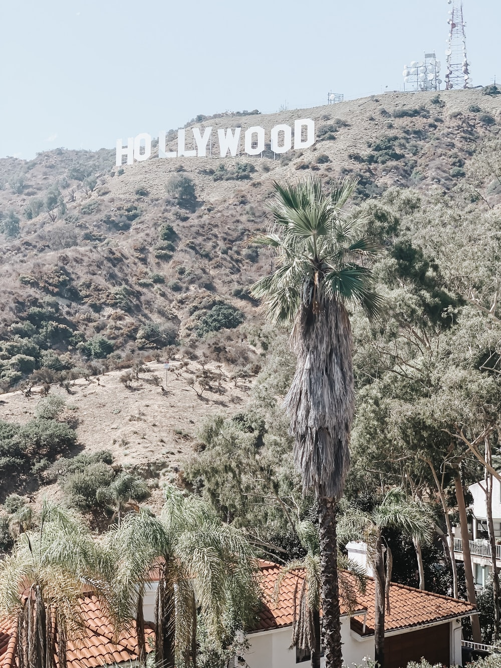 white and brown houses at the foot of Hollywood landmark