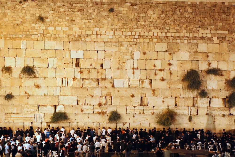 people gathering near brick wall