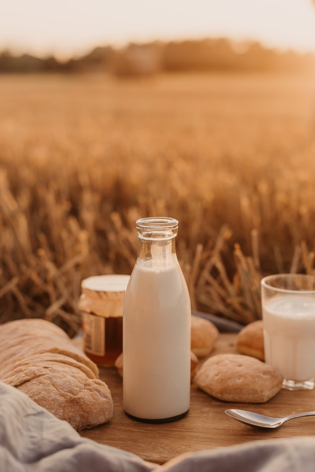 Homemade Nut Milk Recipes | The Healthy Dairy Substitute