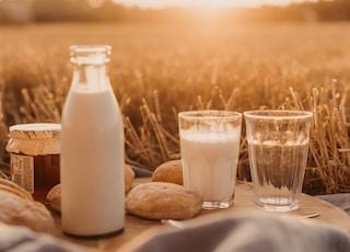 milk filled bottle near bread