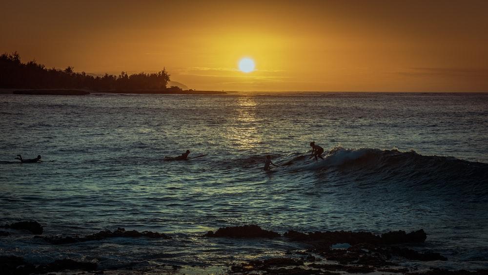 people surf boarding in ocean