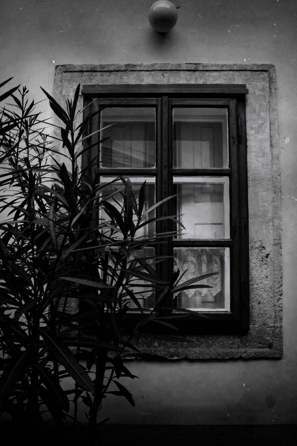 gray-scale photo of glass window
