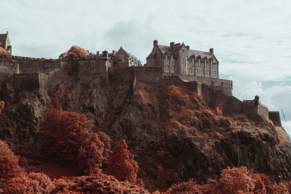 gray castle on brown mountain