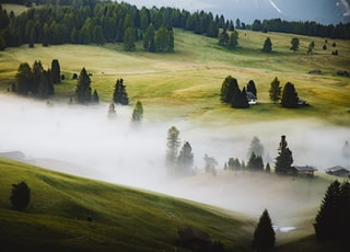 few houses in green field surrounded with green trees covered with fogs