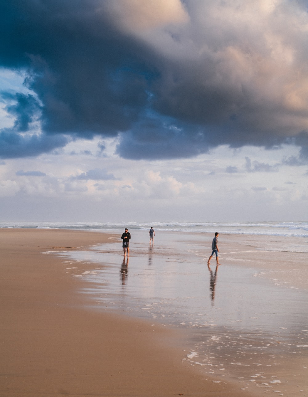people walking on seashire