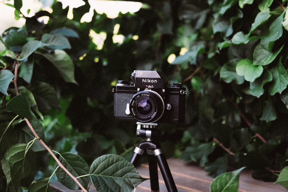 black Nikon DSLR camera on focus photography