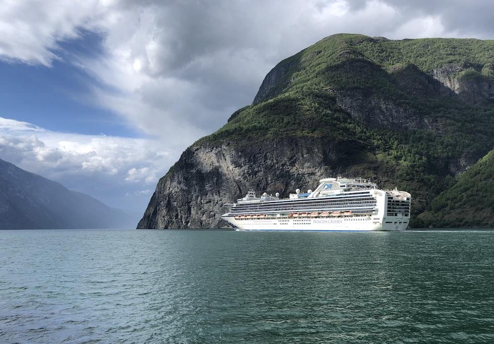 white cruise ship]