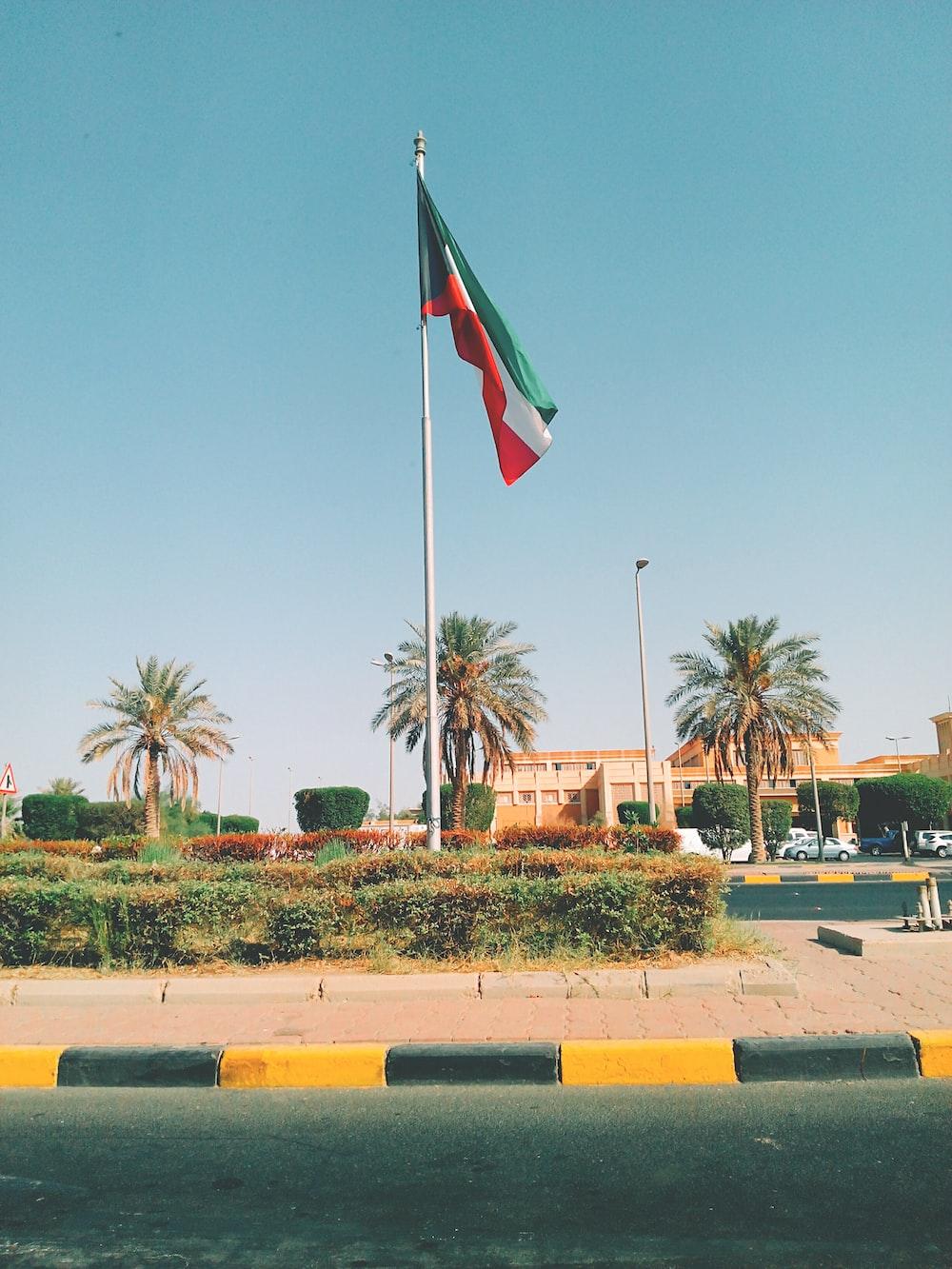 flag near building