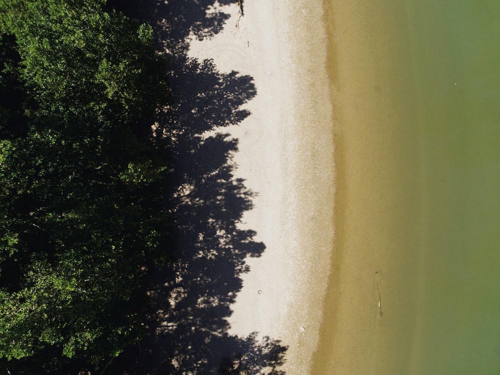 low angle photo of seashore