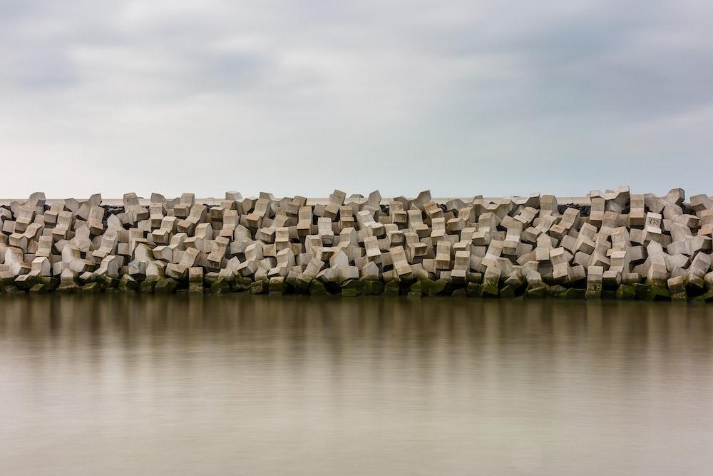 gray rocky shore