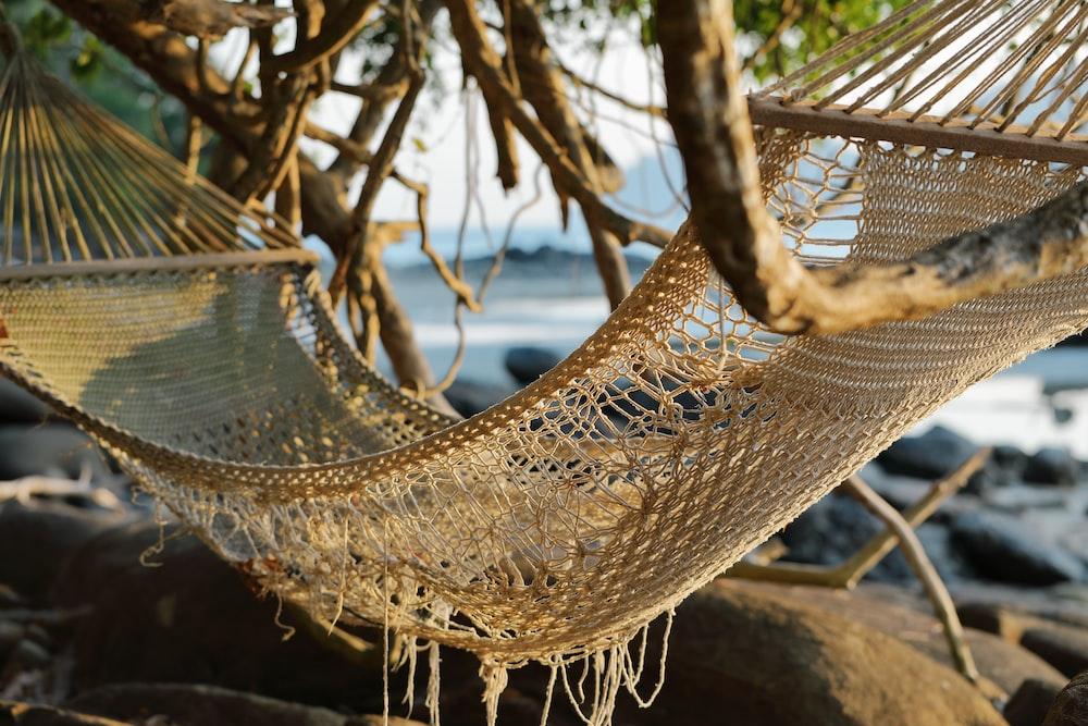 brown knit hammock