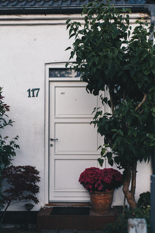 pot of red flowers at the door