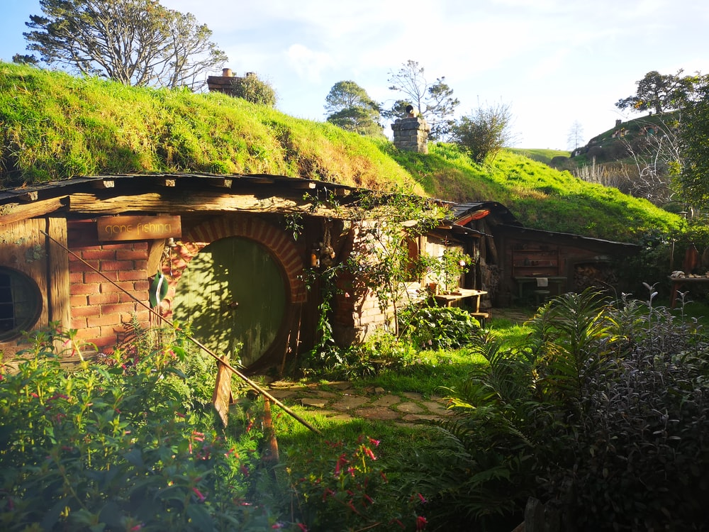 brown house with moss