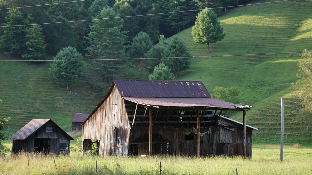 brown wooden house in green field viewing mountain