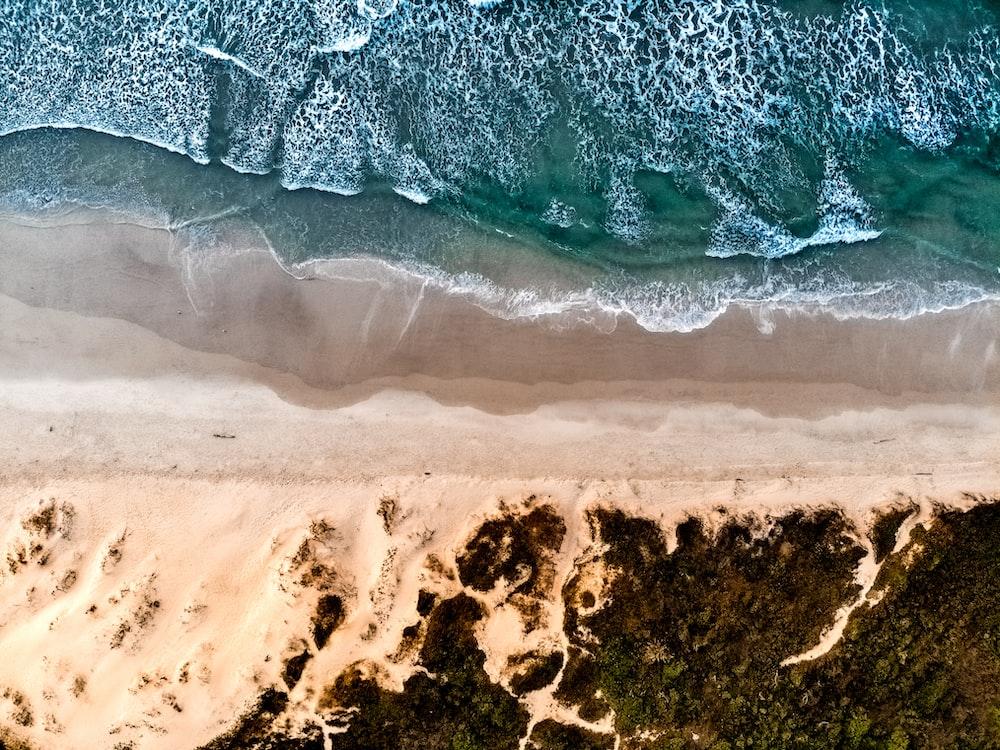 aerial photography beach