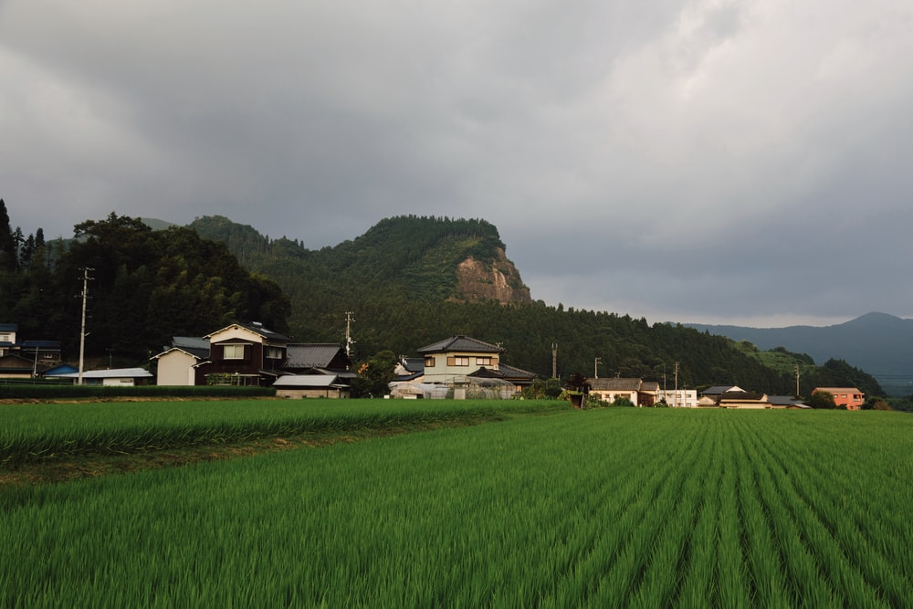 houses in between mountain and farm field