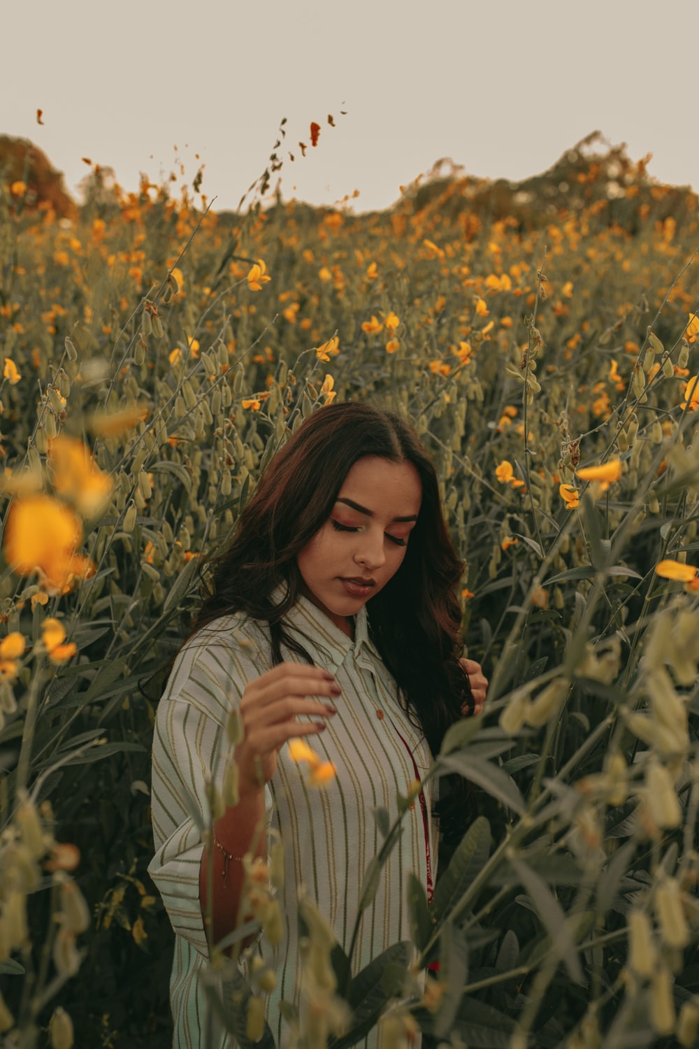 woman in pinstriped shirt standing between yellow flowers