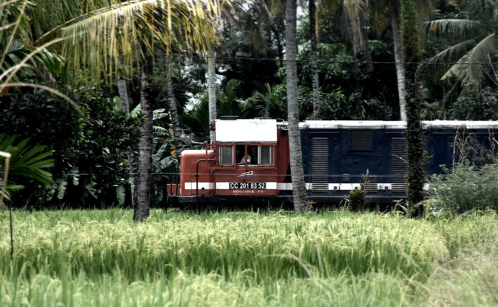 black and red wooden house near green rice field surrounded with tall and green trees