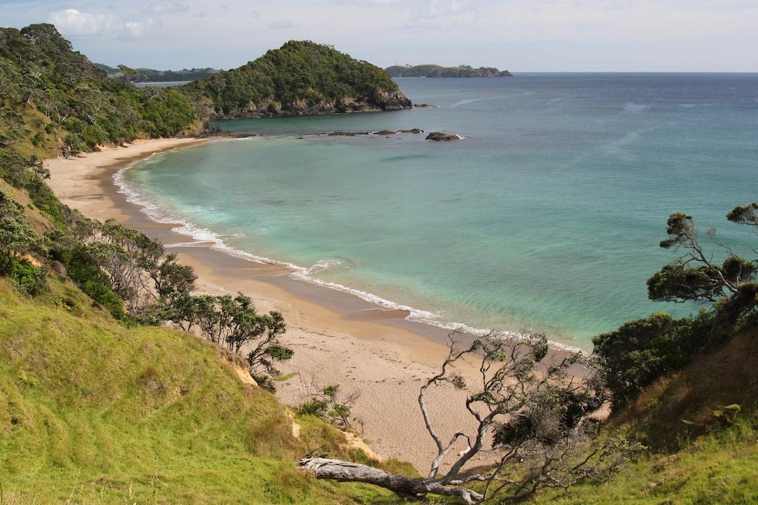 A beach north of Sandy Bay on the Tutukaka Coast, on the coastal footpath heading towards Whananaki.  The Motutara headland is in the distance at the end of the walk.