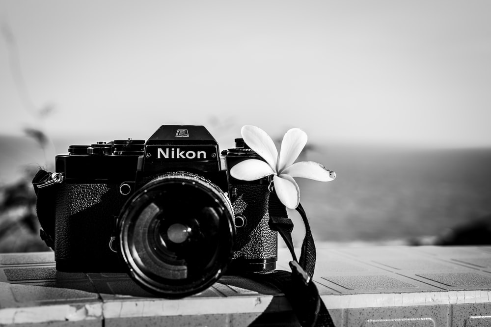 grayscale photo of Nikon SLR film camera with flower