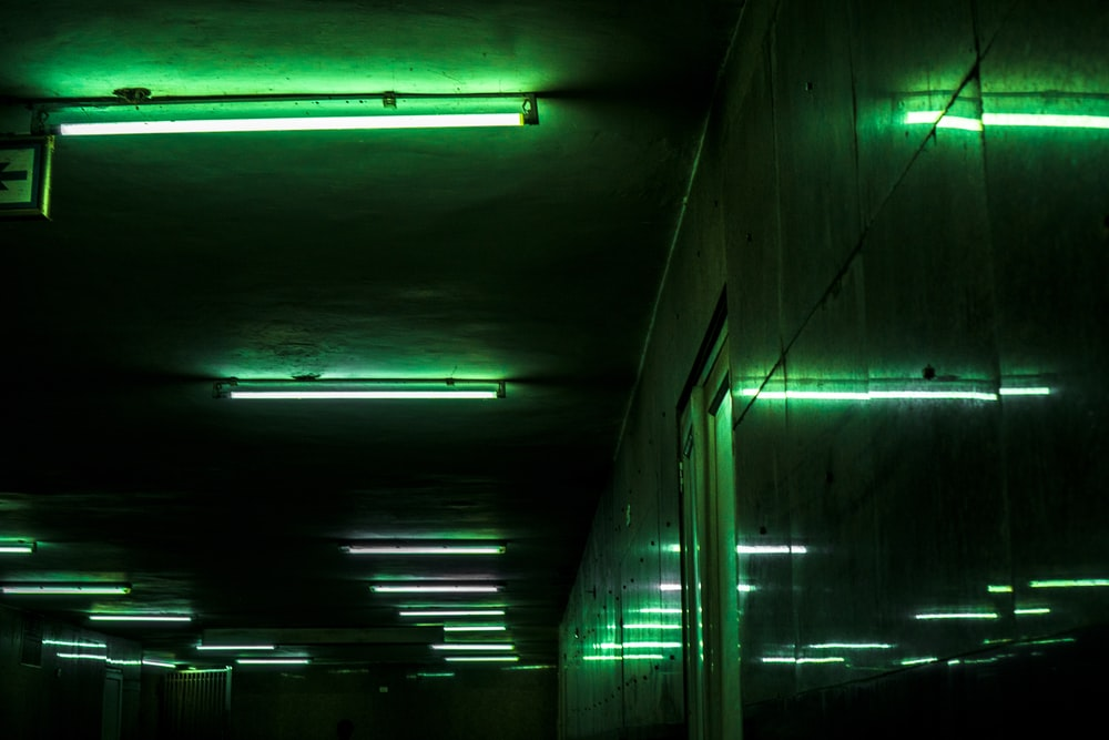 green fluorescent lamp