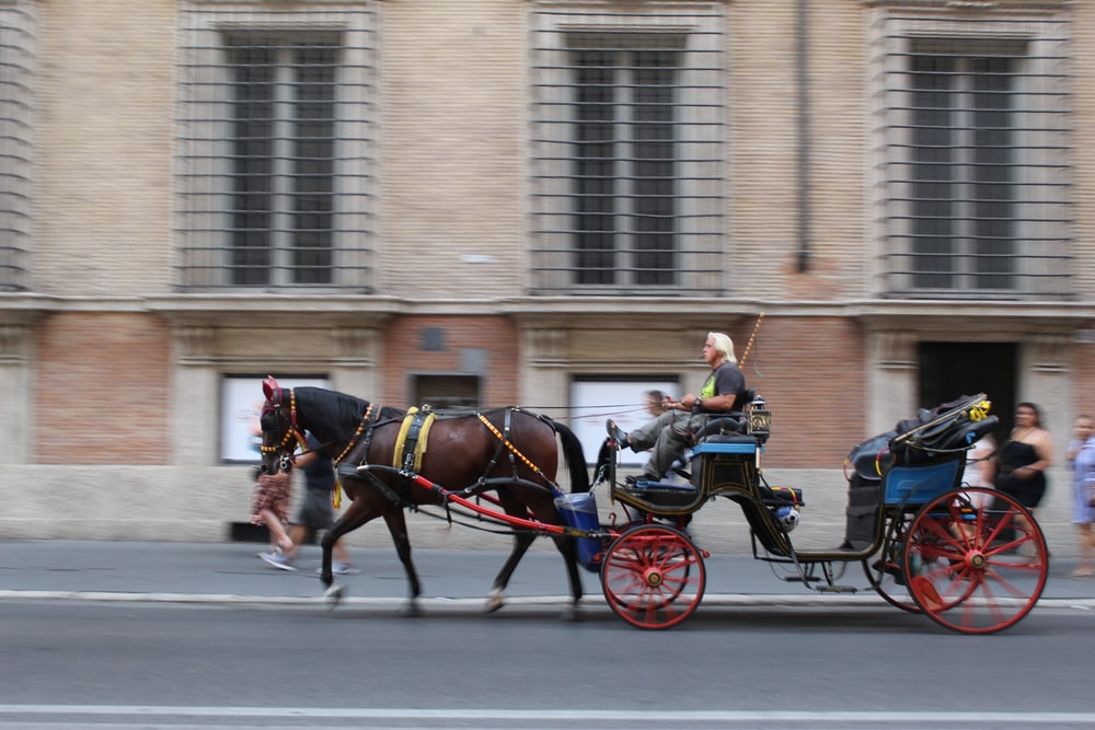 man in horse-drawn carriage in street