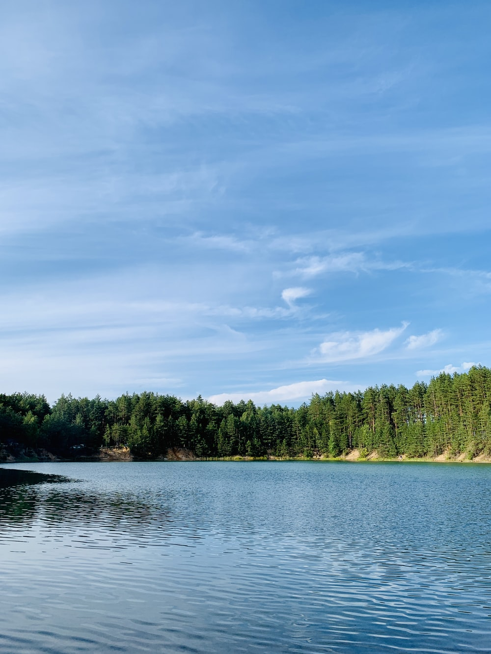 body of water near green trees under blue sky at daytime