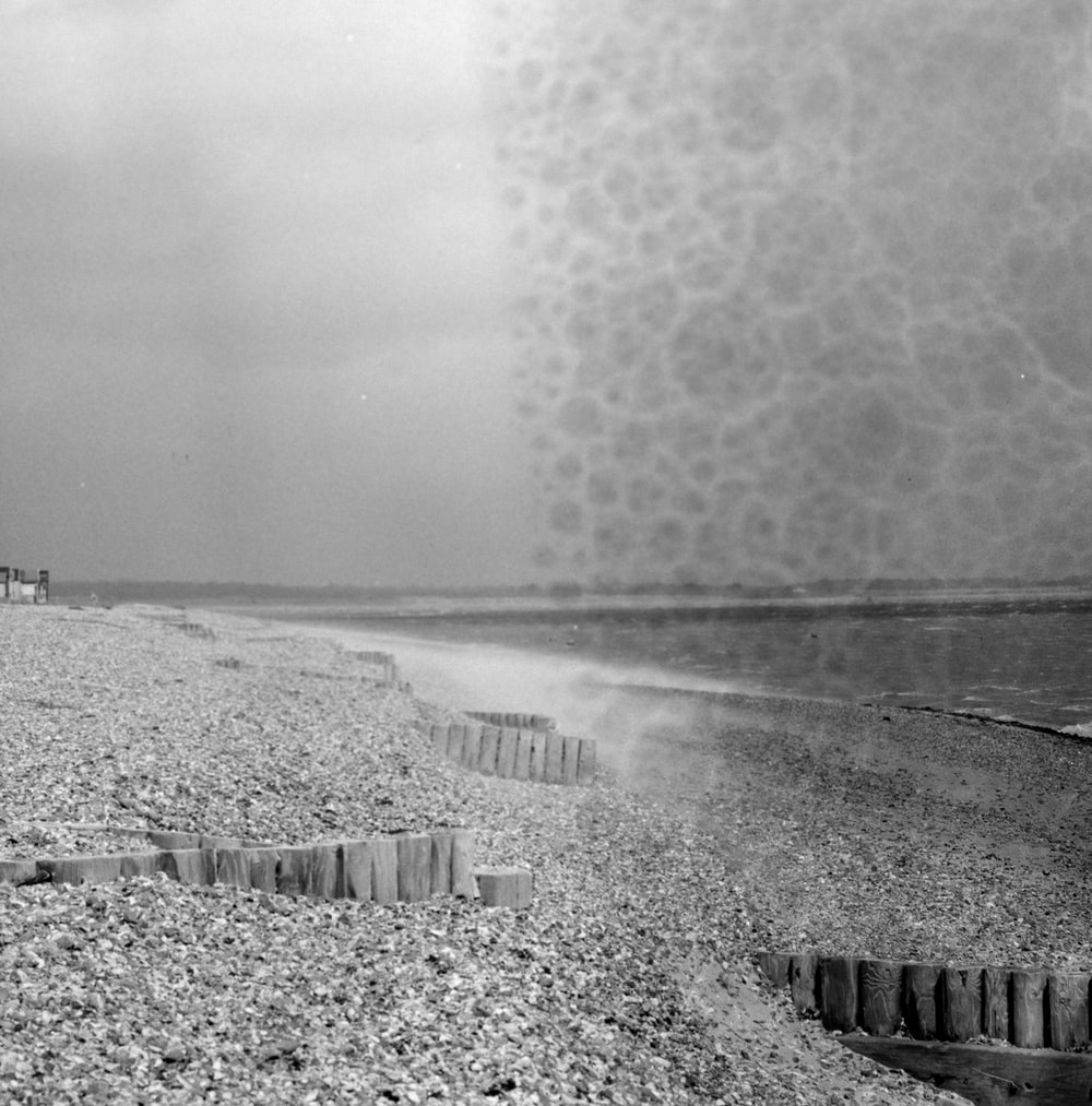 grayscale photography of seashore and sea view