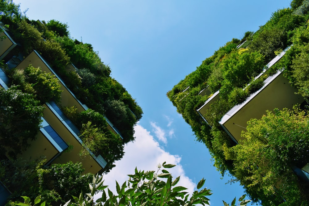 low-angle photography of buildings with plants on it