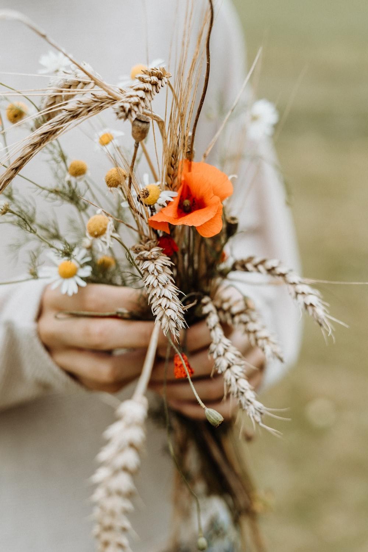 person holding orange pealed flower