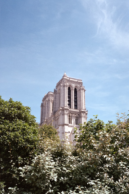 church behind trees under clear sky