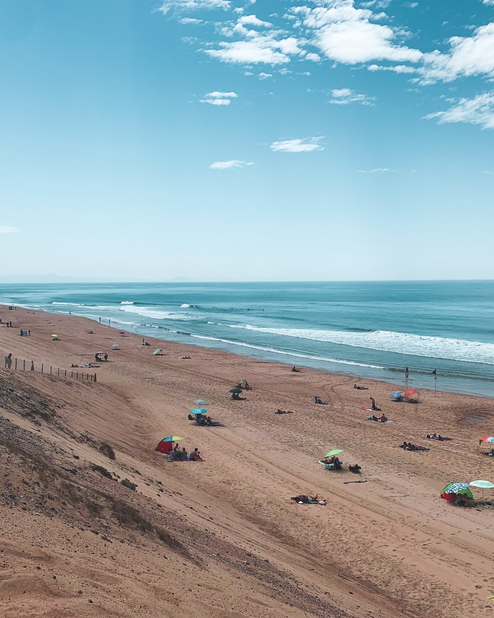 people in sea shore under blue sky